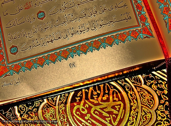 quran-in-gold.jpg