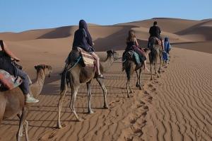 camel-caravan-2