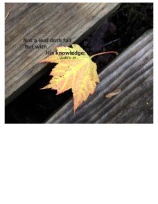 Not a leaf doth fall pdf 2jpeg 3